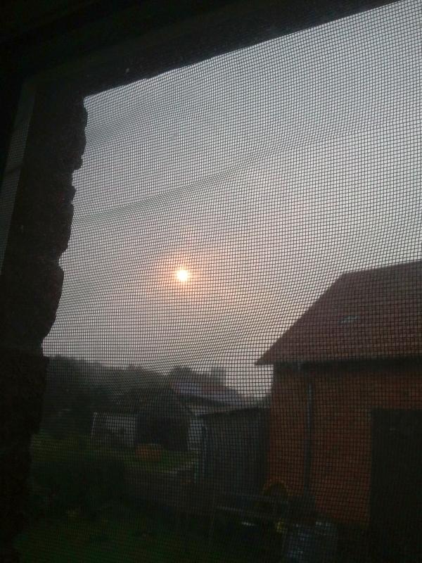 Morgensonne vom Bett aus